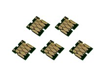 Single-Use Chips (set of 5) for EPSON 33, 33XL (EUROPEAN VERSION)